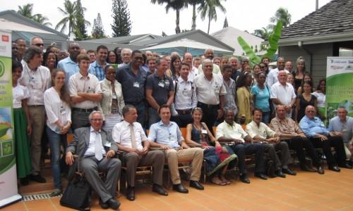 Les spécialistes de la  cercosporiose lors d'un précédent séminaire @Cabaré
