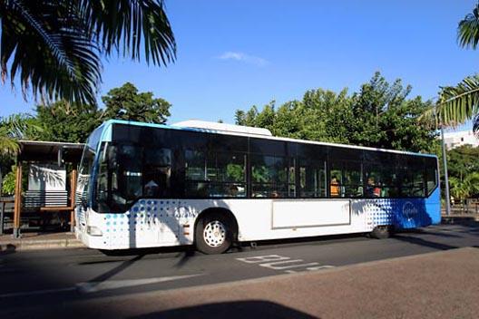 bus-citalis