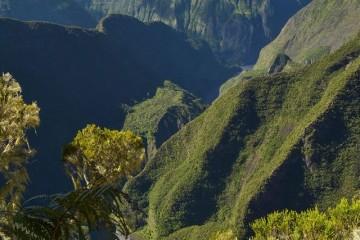 © Parc national de La Réunion - Frédérick Leveneur
